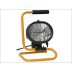 Floor Mounted Floodlight 110V